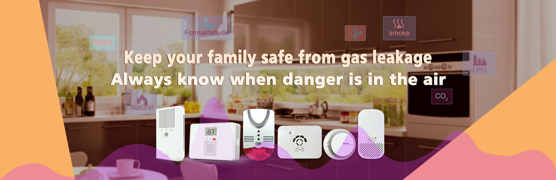 Domestic Gas Alarm Products